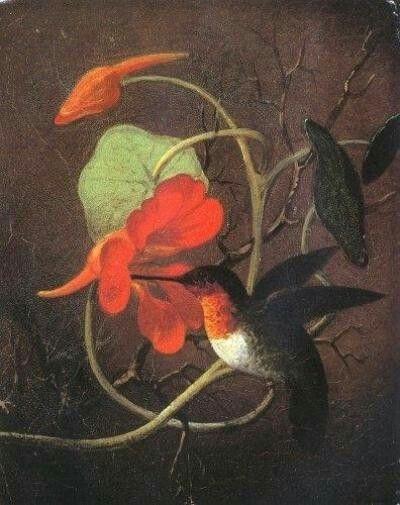 Martin Johnson Heade 'Hummingbird and Nasturtium'