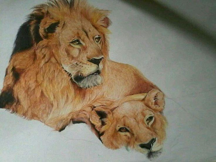 pen drawing...my art work
