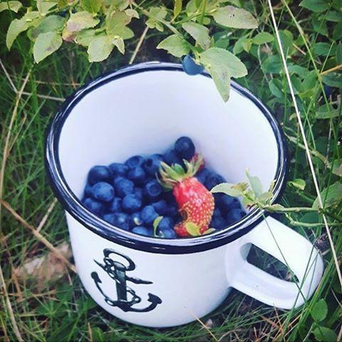 It's still summer - stay on it! Happy Friday folks ⚓️ Regram from @ulliswallen #lionsandcranes #lionsocranes #enamelware #enamelmug #emaljmugg #blueberry #blåbär #summer #sommar #strawberry #jordgubbe #smultronställe #svenskdesign #swedishdesign...