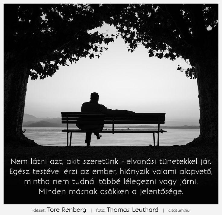 Tore Renberg bölcsessége a hiányérzetről.