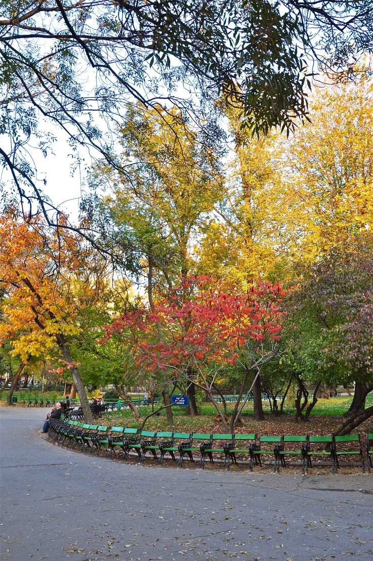 Plimbare de toamnă in Parcul Cismigiu   Autumn walk in Cismigiu Gardens ©Epoque Hotel Bucharest