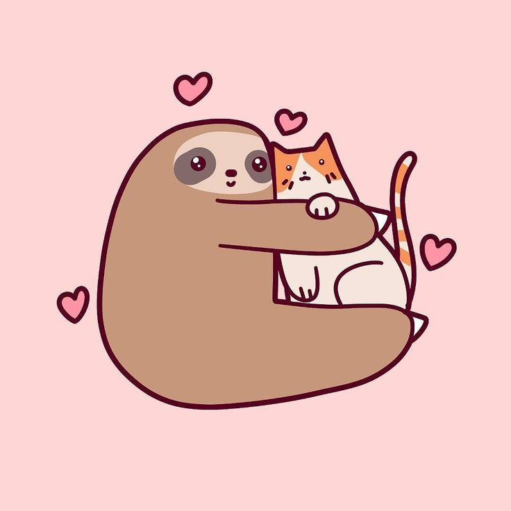 Sloth loves kitteh tag your bff in the comments below find the adorable