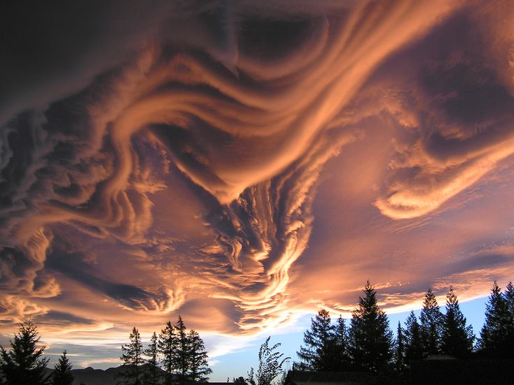 "pleoros:  Canterbury Arch or Asperatus Cloud? ""An amazing sky taken off the deck of a rental home in Hanmer, NZ."""