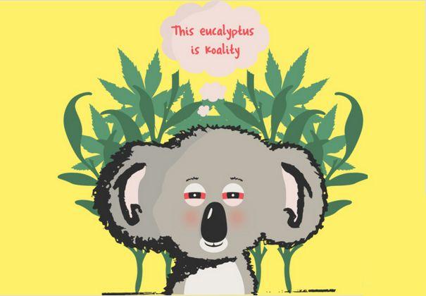 Koality - Funny Koala Availble on apparel, phone cases, mugs stickers etc.   #funny #koala #australia #stoner #weed #high #marijuana #eucalyptus #koalabaear #clothing #apparel #unique #sale  http://www.designbyhumans.com/shop/t-shirt/koality/566782/
