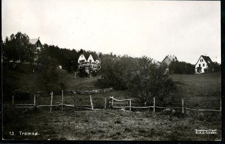 TROMSØ. Fotokort med villabebyggelse  Utg CAE stpl. Nordlands Posteksp. E 1914