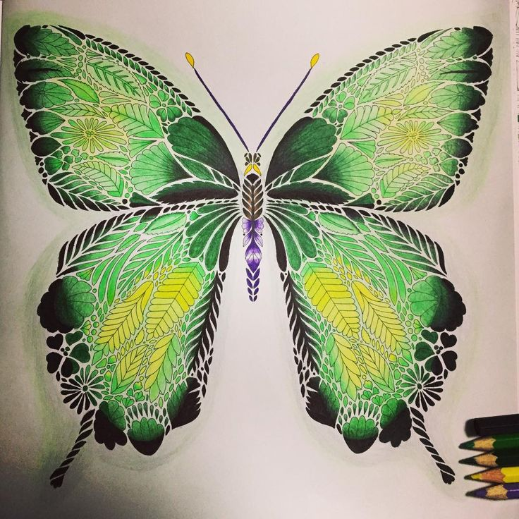 Took Me Half A Day Milliemarotta Tropicalwonderland Colored PencilsDrawingColoring BooksTropical