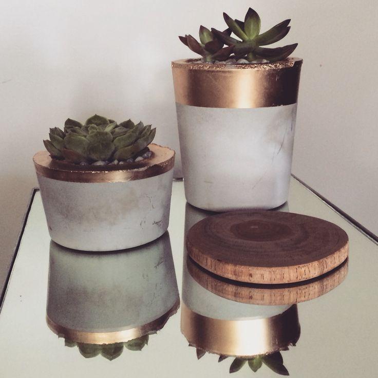 diy succulent pots | gold + concrete
