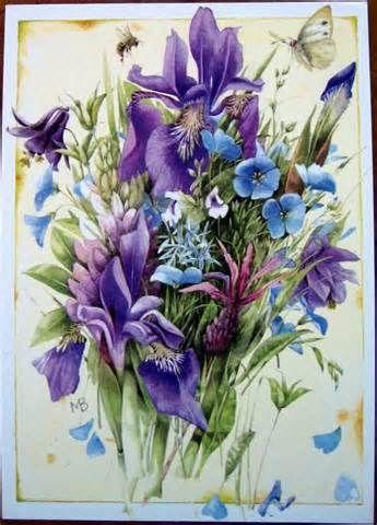 iris by Marjolein Bastin