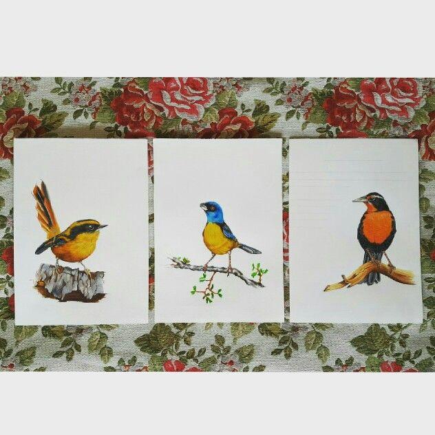 Trilogía aves de Chile. Dibujo a lápiz. Artista coté Correa