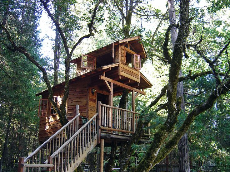Various Tree Houses to Live In for Your Inspirations: Cool High Tree Houses  To Live In Idea With Two Floor Living Space Featured With Balcony And Open  ...