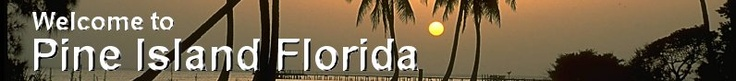 Official Website of the Pine Island Chamber of Commerce