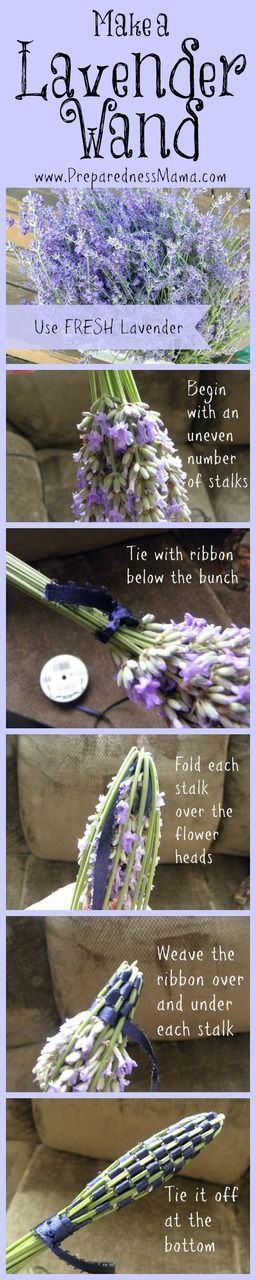 5 Useful (and fun) Things to Do With Your Lavender Harvest http://preparednessmama.com/lavender-harvest/
