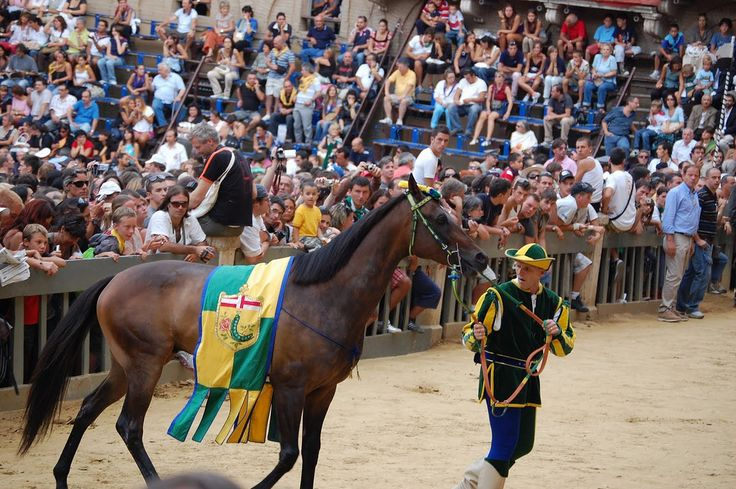 Bruco's horse arrives in 2008