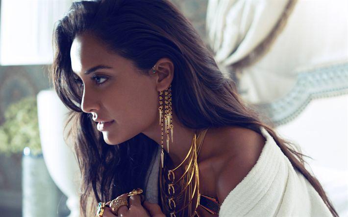 Download imagens Lisa Haydon, 4k, modelo de moda, A atriz indiana, morena, bollywood, retrato