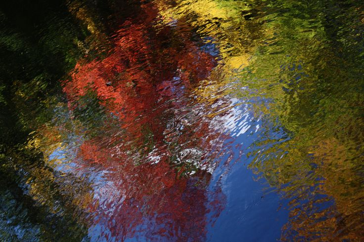 Fall colours in reflection