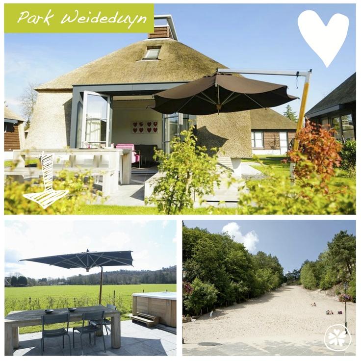 Adresje van de week: Park Weideduyn. Deze mooie vakantiehuizen liggen op enkele minuten lopen van het klimduin en het centrum van Schoorl. Bijzonder adresje vlakbij zee.