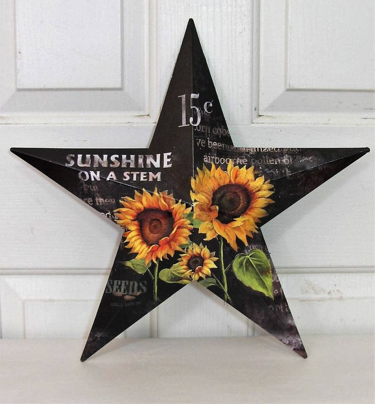 Best 25 Texas Star Decor Ideas On Pinterest Country