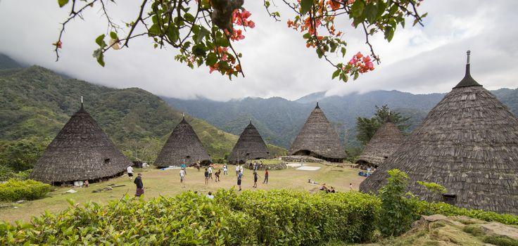 Waerebo Traditioneller Dorf - Manggarai - Flores Indonesien