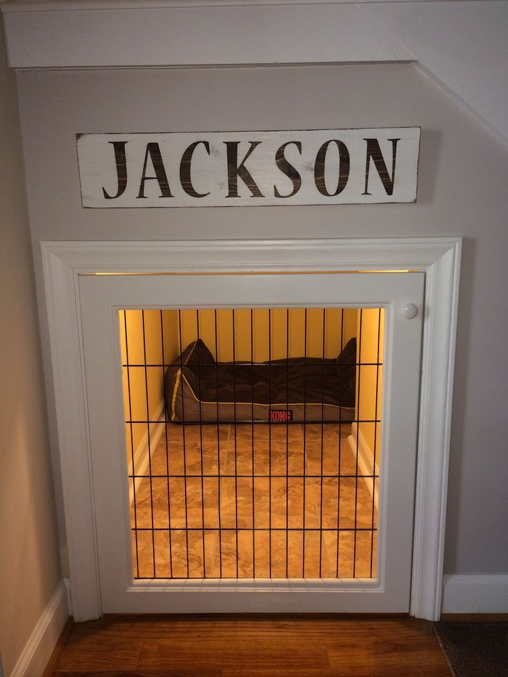 Best 25 Dog Under Stairs Ideas On Pinterest Dog Bed