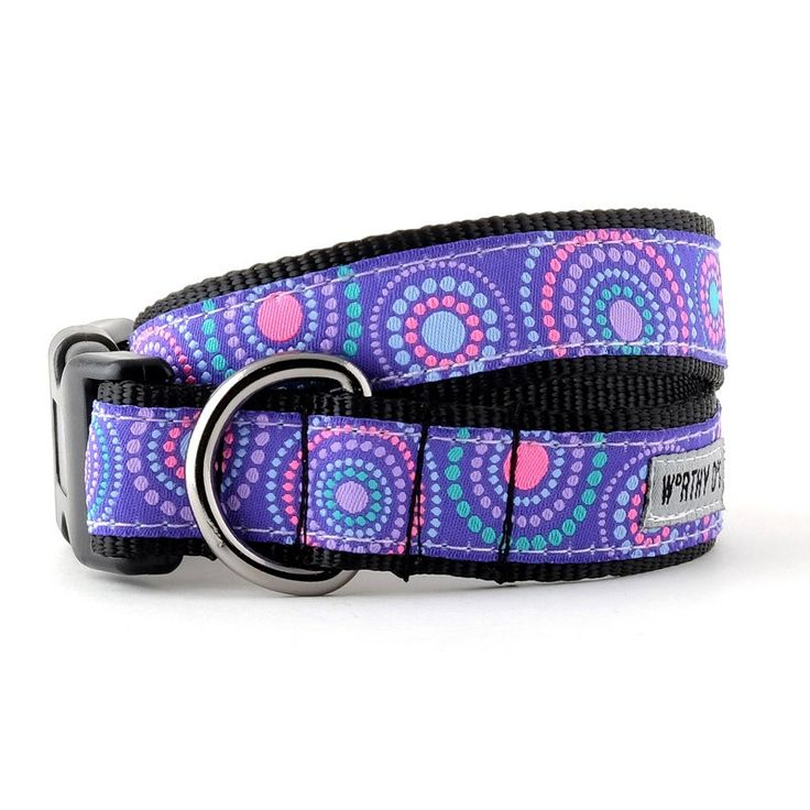 Sunburst Purple Dog Collar   The Worthy Dog