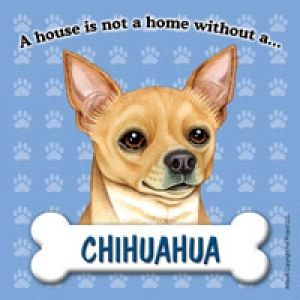 A House Is Not A Home Without A Chihuahua Tan Color Artwork Of