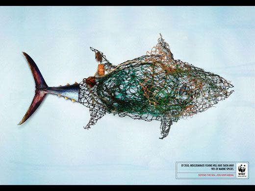 Campaña de WWF.  Contaminación de los mares.