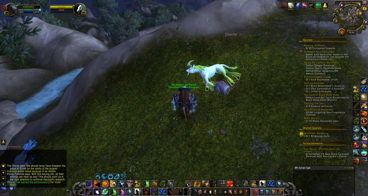 Charlie OD'd in candy mountain #worldofwarcraft #blizzard #Hearthstone #wow #Warcraft #BlizzardCS #gaming