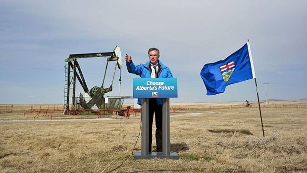 Out standing in a field, Conservative Leader Jim Prentice campaigns for re-election last month. How close a race is it?