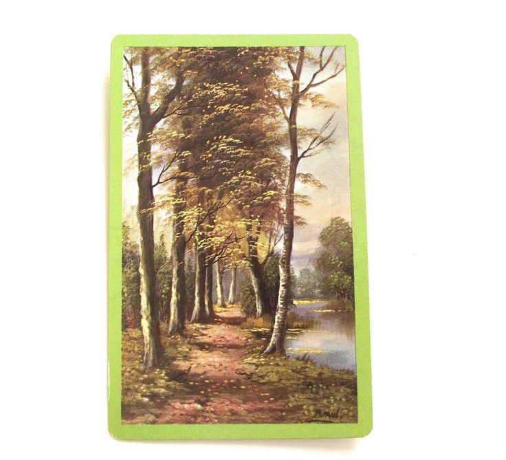 Pinochle Cards with Landscape Scene, Complete Vintage Midway Plastic Coated Card Deck by planetalissa on Etsy