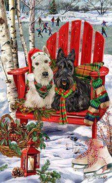 Scottish Terrier Christmas Holiday Cards. I love it.  You don't see many white Scotties..