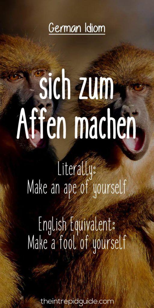 German Idioms sich zum Affen machen