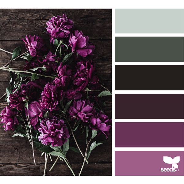 violet ❤ liked on Polyvore featuring design seeds and pictures