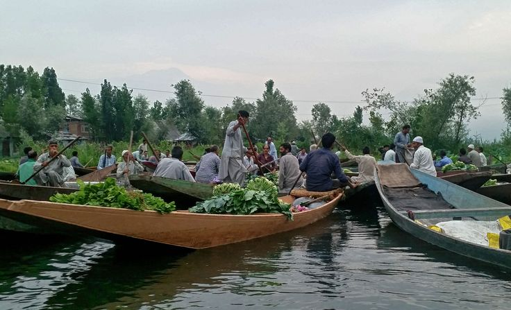 Floating Vegetable market, Dal Lake, Srinagar