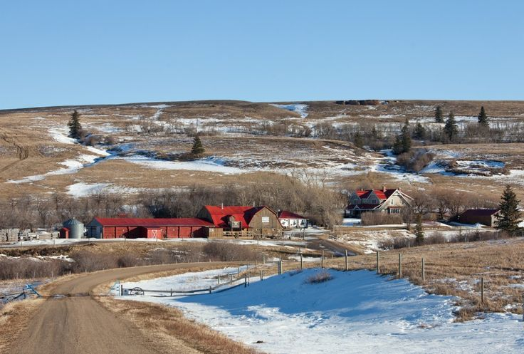 """Historic Reesor Ranch - """"A ranch vacation to Historic Reesor Ranch, a """"Canadian Signature Experience,"""" near Cypress Hills promises the delivery of winter fun meets cozy getaway."""""""