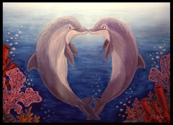 21 best images about Dolphins belly painting on Pinterest ...