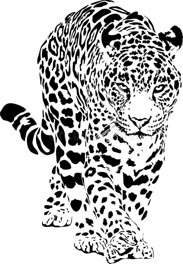 Pin By Anphora Anphora On Cheetah Bear Watercolor Jaguar Animal Air Brush Painting