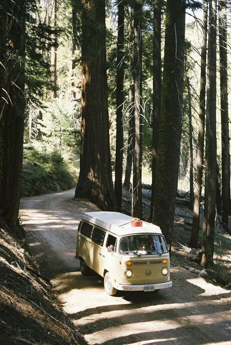 Model: 1978 VW Westfalia Location: Sequoia National Park, CA Photo: tristankimmerlephoto.tumblr.com