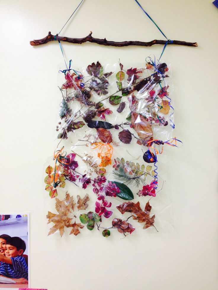 Looking for a new way to collage? Try these nature collages using simple sticky contact paper