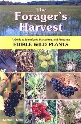 Samuel Thayer popisuje hlavné princípy, ktoré treba vedieť pri zbere divých rastlín