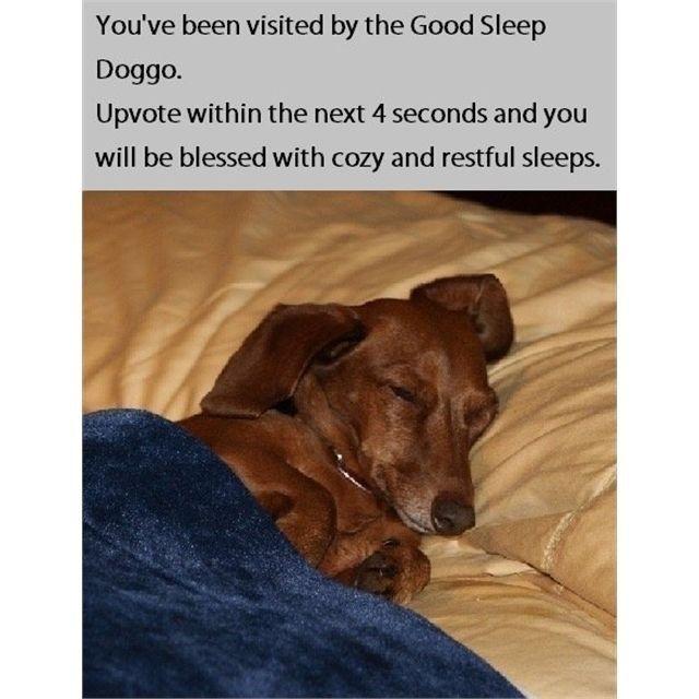 I always need a good sleep