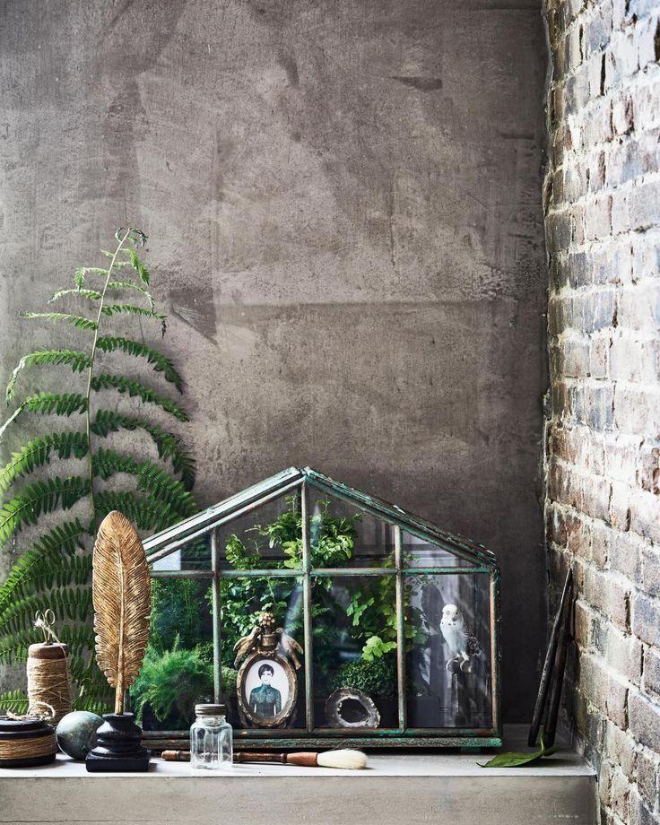 46 best Botanisch @ LiLnl images on Pinterest - kleine regale f r k che