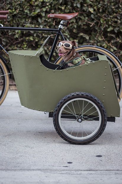 Bicycle sidecar for your dog spin bicycling and cargo bike for How to build a side by side