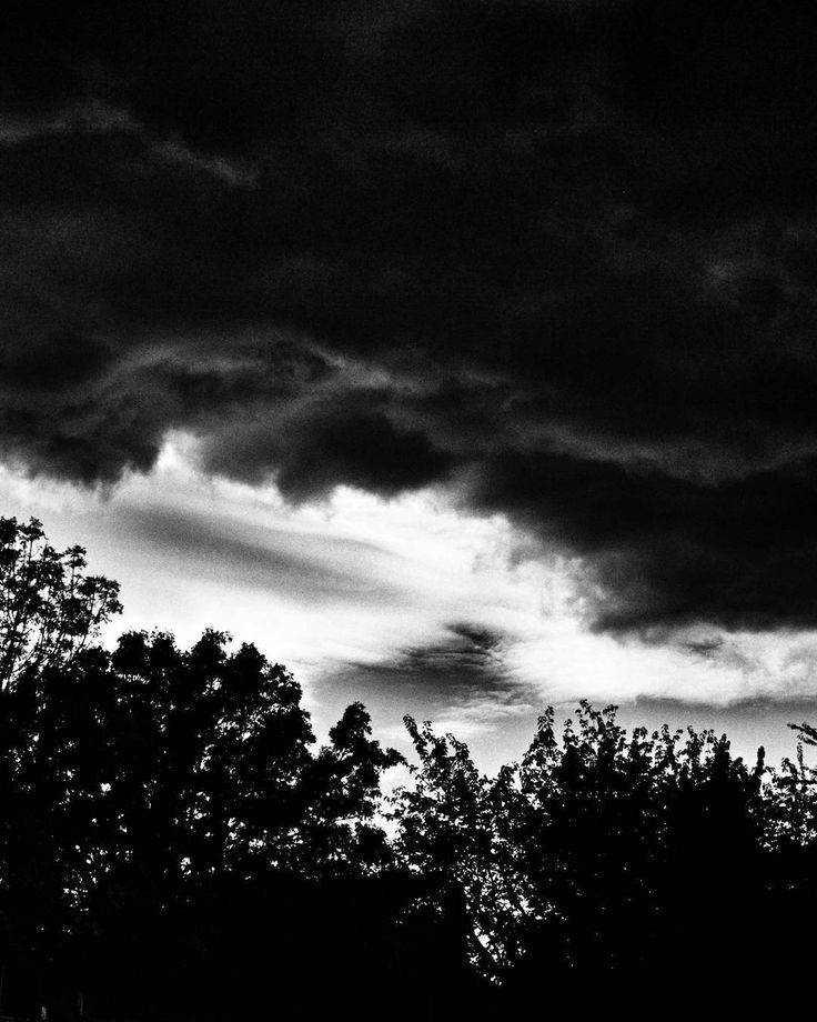 Storm 2. #rileypark #yvr #veryvancouver  #blackwhitephotography #bnw #monochrome #hicontrast #bnw_captures #bnw_city #noir_vision #simply_noir_blanc