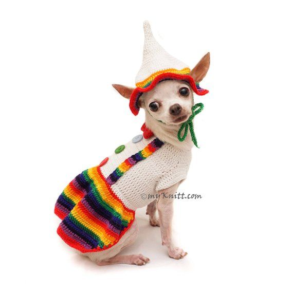 ccd87a940737 Dutch Girl Dress, Dutch Girl Dog Costume, Colorful Dog Hats Crochet,  Chihuahua Clothes, Dachshund Cl