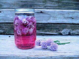 Pažitkové květy dobře ochutí a pěkně obarví i ocet. Stačí jej pak používat na salátové zálivky a vychutnat si svěží chuť jara.