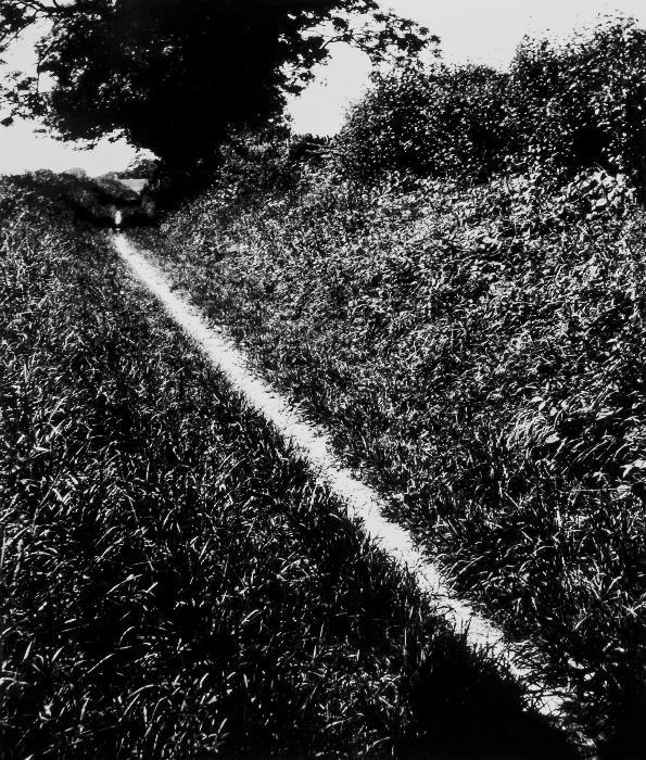 'Pilgrim's Way, Kent', Bill Brandt, 1950