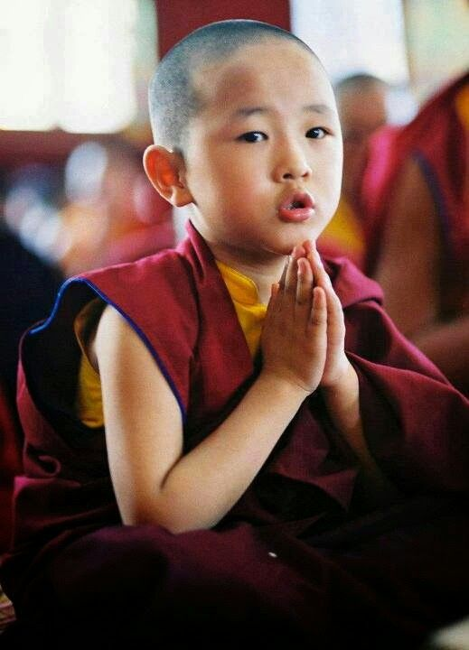 maize buddhist singles The first african buddhist monk i was born in rwanda, a tiny country in the heart of africa there is no single buddhist temple, no monastery and no monks in rwanda, where the percentage of.