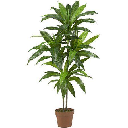 "48"" Dracaena Silk Plant - Walmart.com"