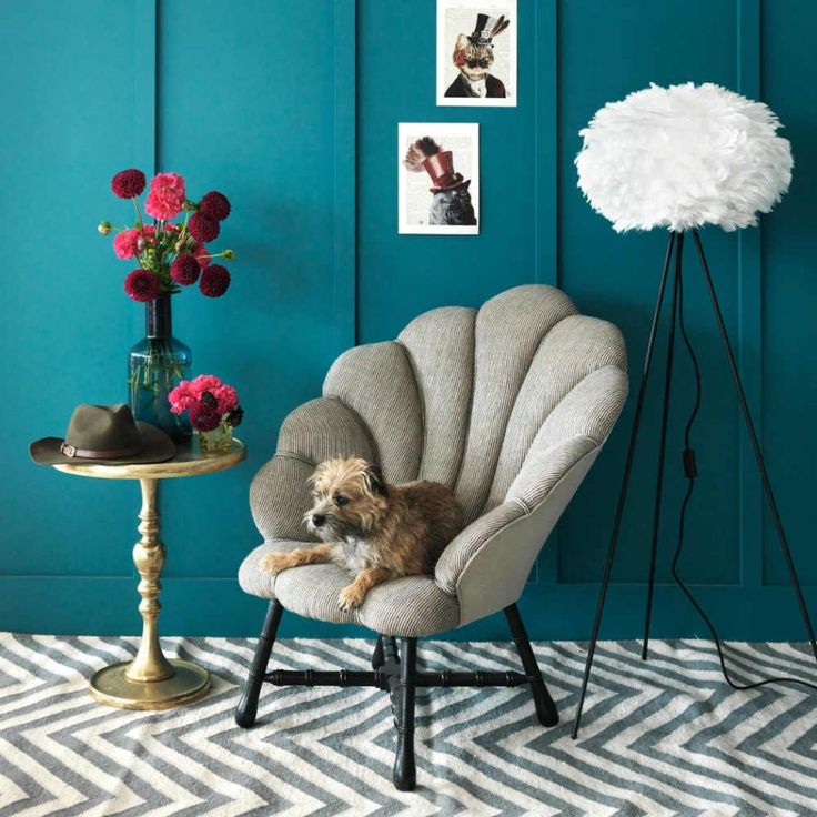 Graham & Greene: the Ariel Rococo Chair is one your pets will fight you for!