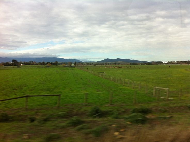 Never Ending farms across the countryside at Yarra Valley